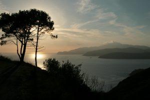 Elba 06f 071